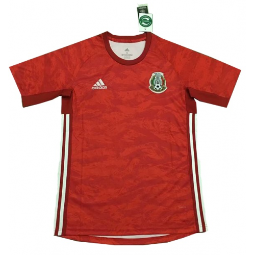 Mexico Goalkeeper Soccer Jersey Red 2019